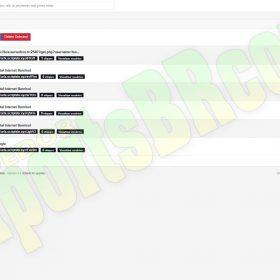 ENCURTADOR DE URL premium url shortener V5